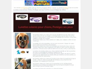 Lunettes solaires pour chiens