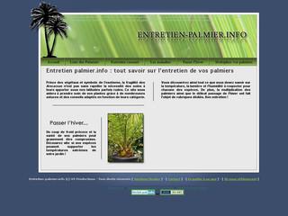 Entretien palmier